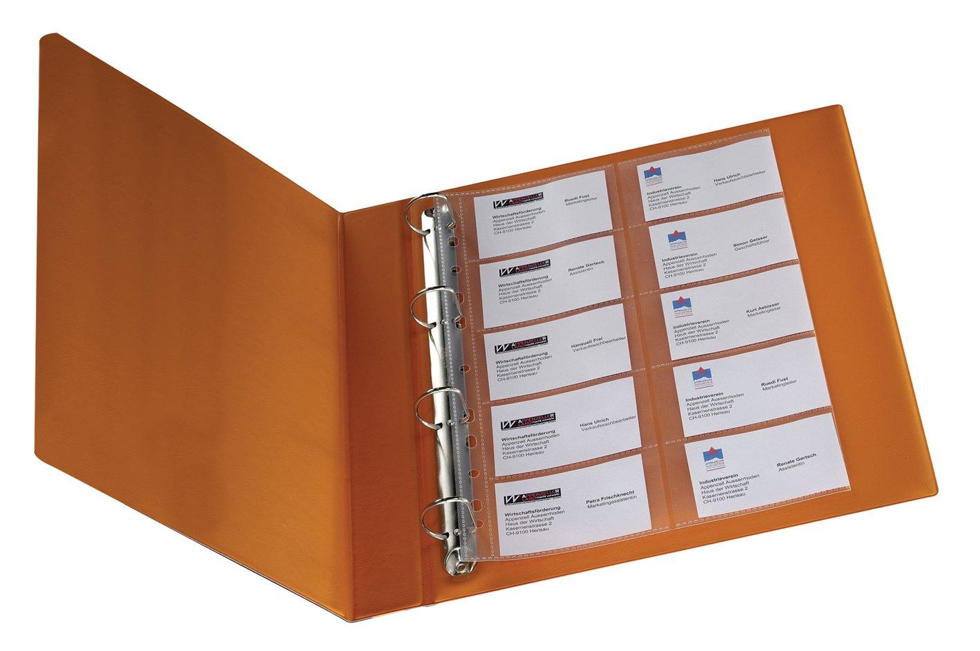 Q Connect - Raccoglitore per 20 biglietti da visita in polipropilene con fori, formato A4, confezione da 10 KF00716