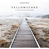 Yellowstone: A Land of Wild and Wonder