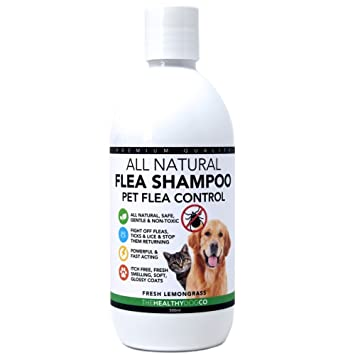 The Healthy Dog Co Champú antipulgas Completamente Natural | Limoncillo | 500ml | El Mejor Tratamiento ...