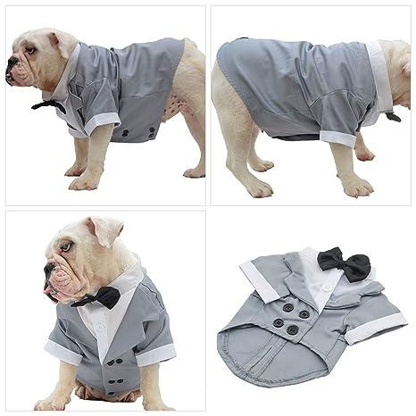 LEEDY - Disfraz de Perro, Traje de Esmoquin para Boda ...