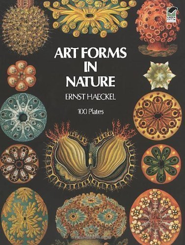 Art Forms in Nature by Ernst Haeckel (Jun 1 1974)