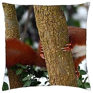 Squirrel - Throw Pillow Cover Case (18