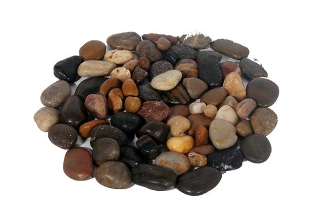 RM Multicolor Decorative Gl Pebbles pack contains 80 pebbles ... on tree with pebbles, table with pebbles, rug with pebbles, glass with pebbles, painting with pebbles, decorating with pebbles, water with pebbles, planter with pebbles, jar with pebbles, fireplace with pebbles, flowers with pebbles, pot with pebbles, jewelry with pebbles,