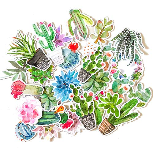 Super Cute Watercolor Cactus and Succulent Plants Stickers for Your Laptop, Phone, and Scrapbook by Navy Peony (28 Pieces)