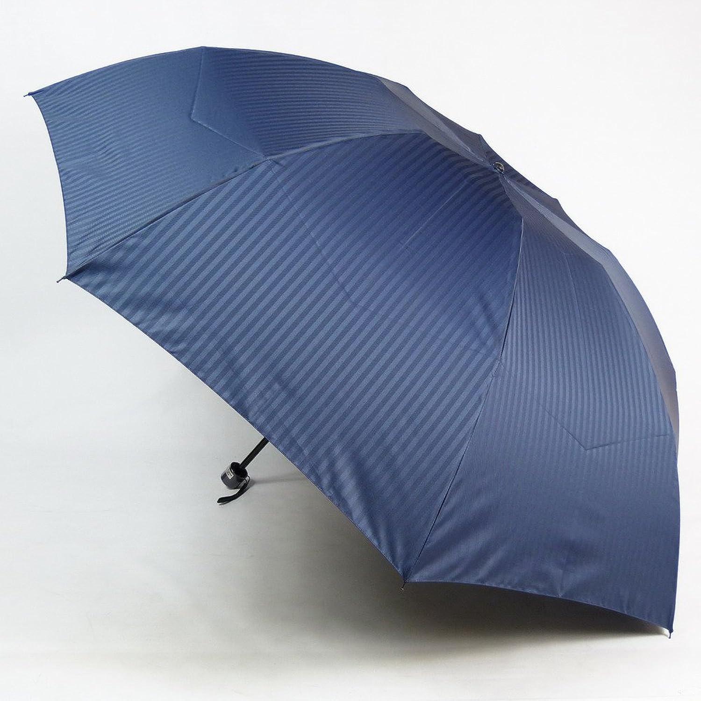 アスティ 傘 メンズ 折りたたみ ミニ 先染 ジャガード織 シャドーストライプ 3段式 大きい 70cm 日本製 15062 B00B8QEAU6ネイビー(D)