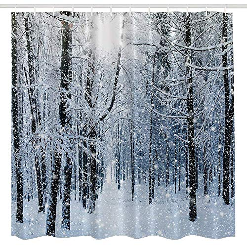 BROSHAN Blue White Tree Forest Shower Curtain,Winter Nature White Snow on Tree Branch Country Farmhouse Art Print Bath Curtain,Polyester Fabric Bathroom Decor Set with Hooks,72x72 inch - Snow Shower