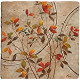 Thirstystone Ambiance Travertine Coaster, Multicolored, Colored Leaves