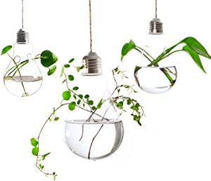Ivolador 3PCS Lightbulb Glass Hanging Planter Vase Terrarium Container for Hydroponic Plants Home Garden Decor - Double Hole
