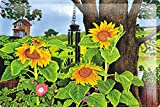 """Tin Sign Flora Floral Decoration Sunflower tree wind chime 8X12"""""""