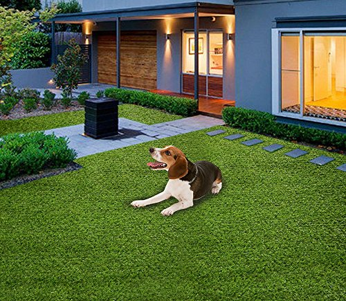 Home Cal Artificial Grass Rug Series Landscape Outdoor Decorative Synthetic Turf Pet Dog Area 2cm 4'x6' Spring Grass