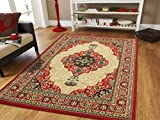 Cheap Large Area Rug Oriental Carpet 8×11 Living Room Rugs Red 8×10 Persian Rugs Clearance (Large 8×11, Red)