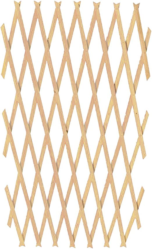 434037 Rejilla de madera extensible Welkhome 180x90 cm para las plantas: Amazon.es: Jardín