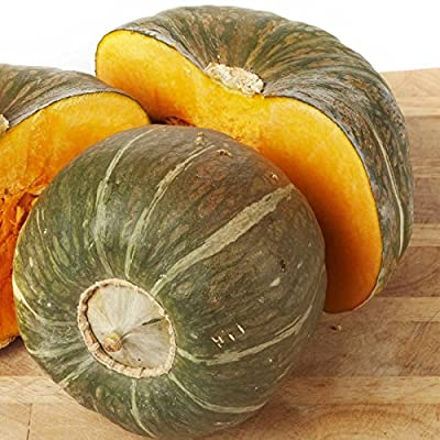Burgess Buttercup Winter Squash Garden Seeds - Non-GMO, Heirloom - Vegetable Gardening Seed
