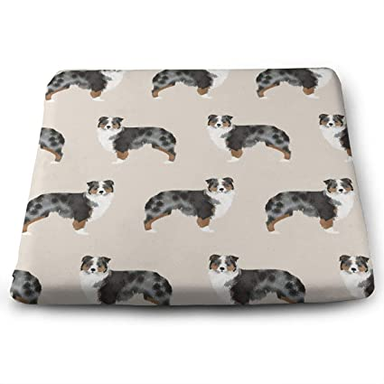Amazon Com Australian Shepherd Dogs Seat Cushion Pad Memory Foam