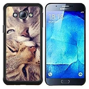 EJOOY---Cubierta de la caja de protección para la piel dura ** Samsung Galaxy A8 A8000 ** --Americano de Pelo Corto Rizo Love Cats beso
