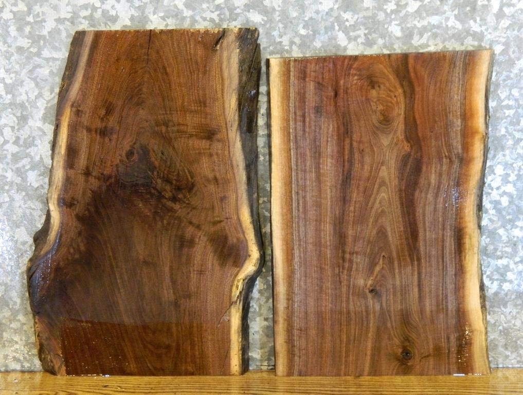 2  Black Walnut Live Edge End Table Top/DIY Charcuterie Boards/Slabs T: 1  1/16u0027u0027, W: 14 3/4u0027u0027, L: 21 1/8u0027u0027   8121 8122     Amazon.com