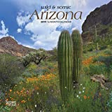 Arizona, Wild & Scenic 2019 7 x 7 Inch Monthly Mini Wall Calendar, USA United States of America Southwest State Nature (Multilingual Edition)