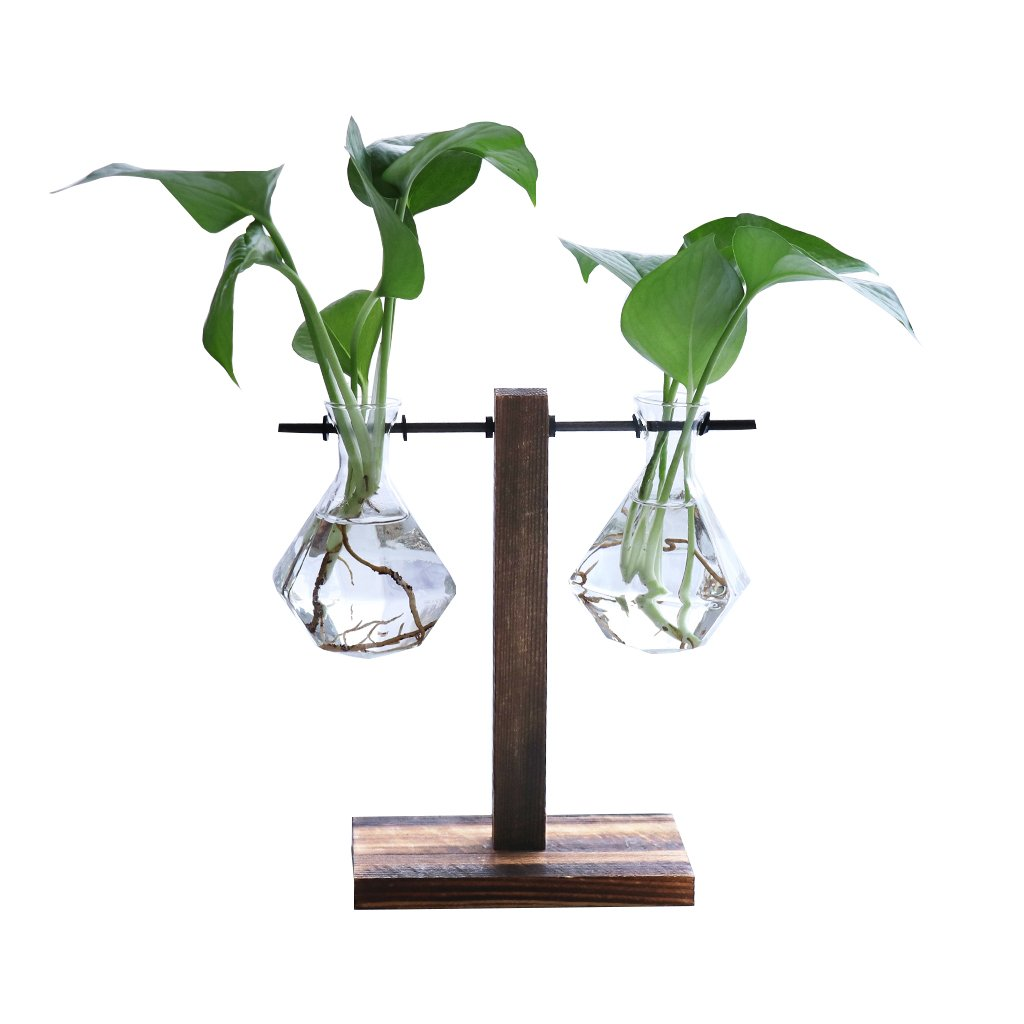 Ivolador Desktop Glass Libra Planter Bulb Vase Hanging with Retro Solid Wooden Stand for Hydroponics Plants Office Desk Wedding Decor (2 Bulb Vase)