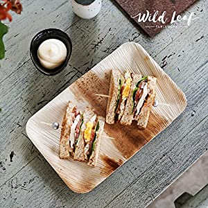 Disposable Palm Leaf Plates, 25 Pack / 6.3 x 9.5 Inch / Rectangular. Compostable, Biodegradable Party Platter Trays - Comparable to Bamboo Wood Fiber - Eco Friendly Alternative to Plastic Tableware