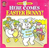 Here Comes Easter Bunny!, Michele Nidenoff, 0766601684