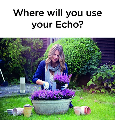 how to use echo php