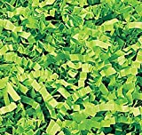 """Custom & Unique {Approx 1/8"""" Inch Wide - 10 Pounds} of Crinkle Cut Shredded Gift Basket Filler Paper Made From Cardstock w/ Seasonal Trendy Grass Springtime Fun Decorative Design (Green)"""