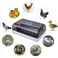 Incubadora Incubadora De Uso General para Aves De
