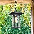LOG BARN 1-Light Transitional Pendant Lights Black Outdoor Hanging Lights