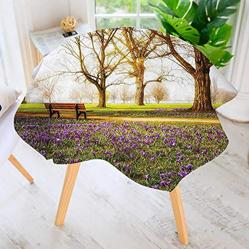 (UHOO2018 Indoor/Outdoor Tablecloth-Decor Collection Violet Blooming Crocus Flowers in The Park with Trees and Benches Available in Many Different Sizes and Colorways 35.5