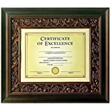 Burnes Tuscan Bronze Matted Document Frame (DAXN1878N1T)