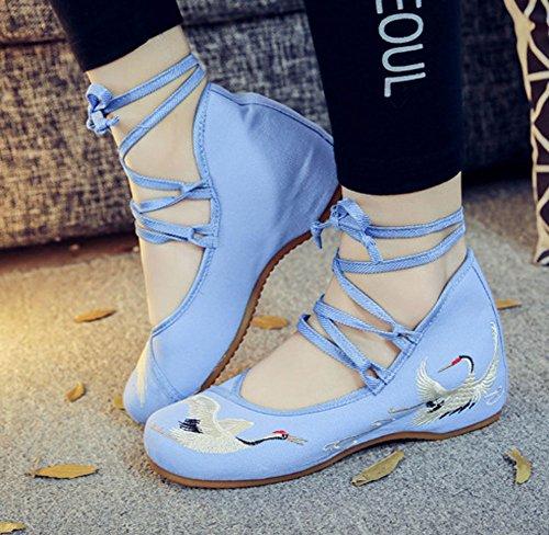 Avacostume Vrouwen Casual Lace-up Kraan Borduurwerk Dansschoenen Blauw