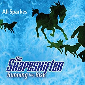 Running the Risk Audiobook