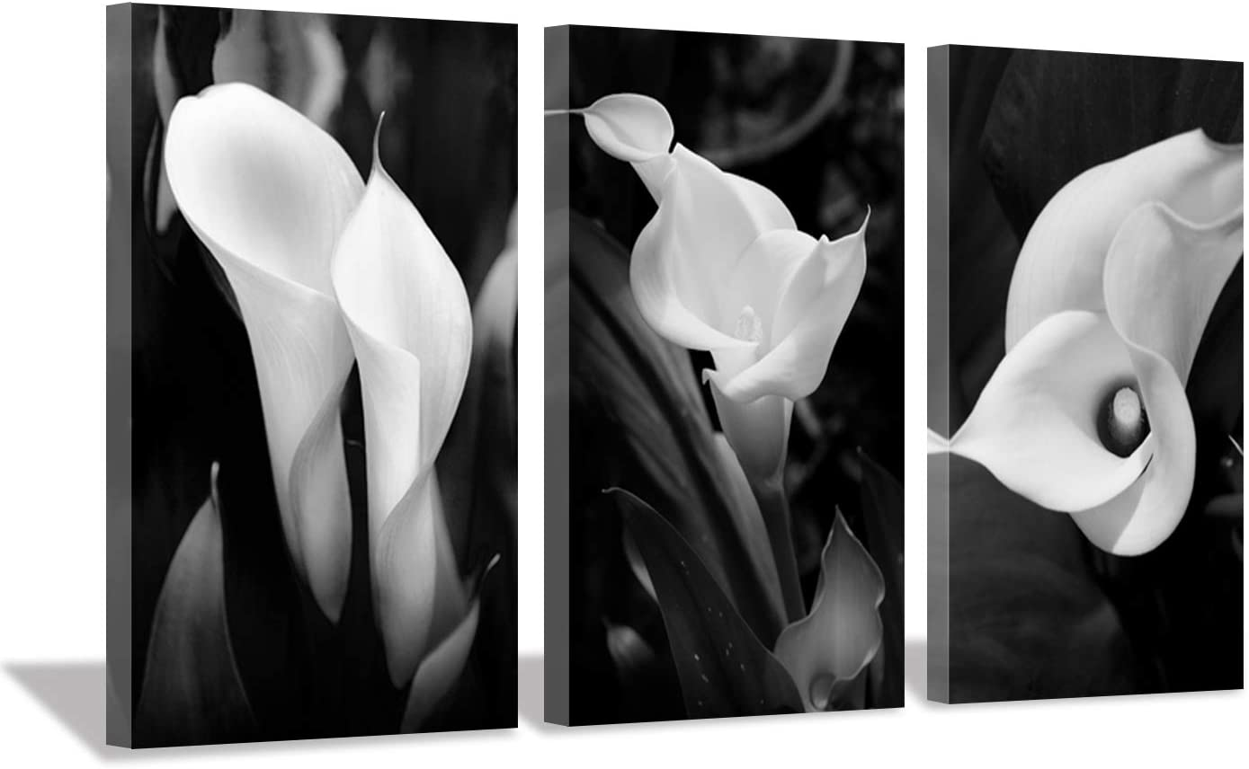 Floral Artwork Nature Flower Picture: Calla-Lily Print on Canvas Set for Wall Art (20 inch x 34 inch x 3 Panels)