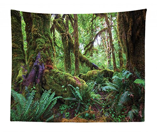 Lunarable Jungle Tapestry King Size, Monsoon Tropical Jungle Bushes Ferns Trees Vegetation Wilderness Land Scene, Wall Hanging Bedspread Bed Cover Wall Decor, 104 W X 88 L Inches, Green (Tropical Wall Hanging)