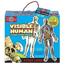 T.S. Shure Visible Human Jumbo Floor Puzzle