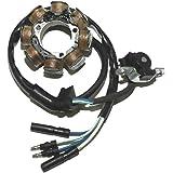 generatore di bobina di accensione per Hon-da CRF250 CRF 250 R CRF450 CRF 450 R 2010-2012 Bobina di statore per moto Artudatech 12 poli