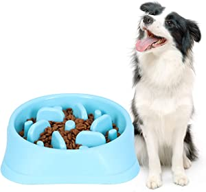 Slow Feeder Dog Bowl Non Slip Non Toxic Fun Healthy Feeder No Chocking Dog Food Water Bowl for Large Medium Small Dogs Pet Blue Color