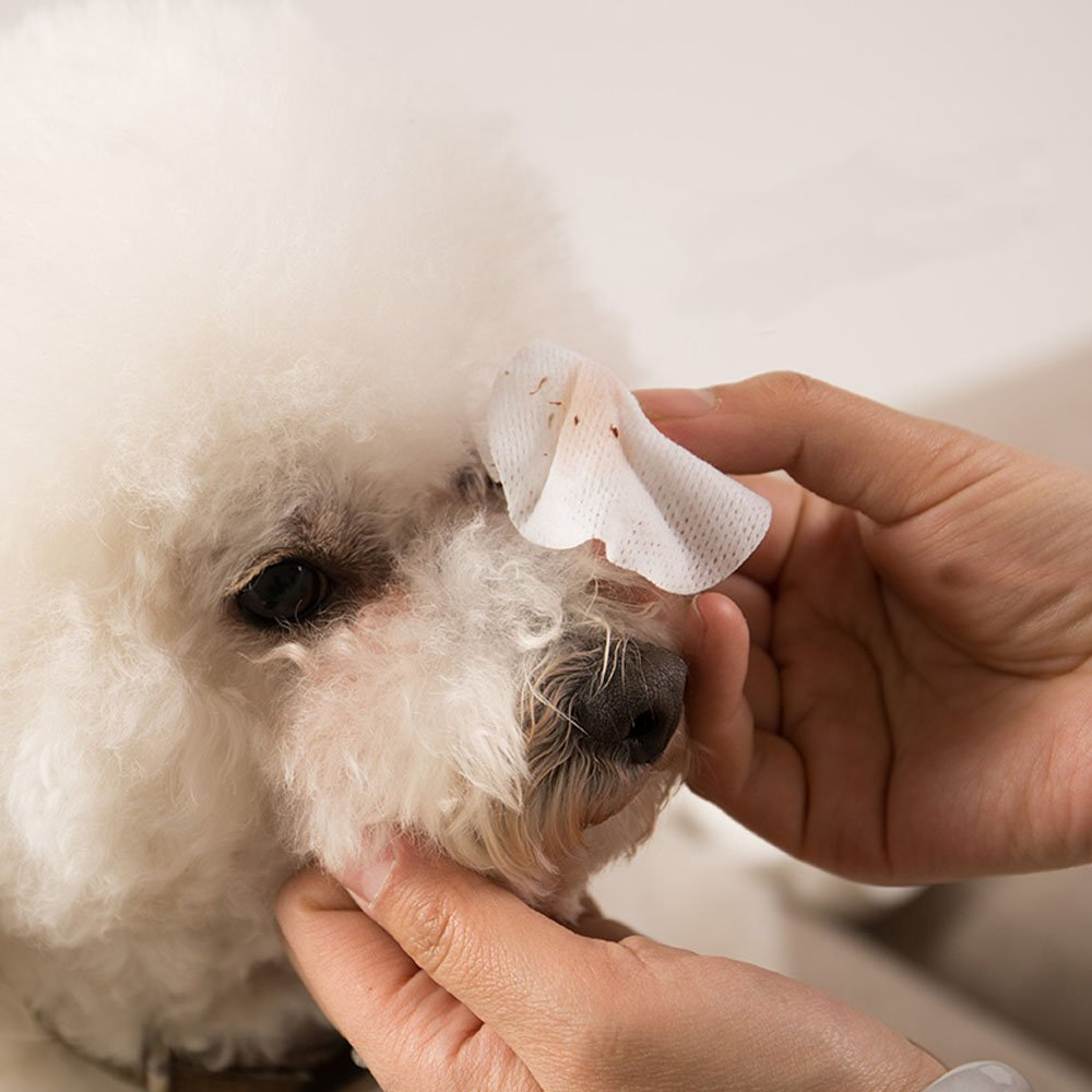 Eye Tear Stain Remover for Cats & Dogs -100 Pre Soaked Cotton Pads - Best Natural Eye Crust Treatment for White Fur - No Chemical and Bleach Free-Eye Clear Sterile Eye Wash by Mwellewm (Image #1)