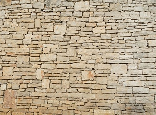 Lucky Horseshoe Wish Stone - Leowefowa Vinyl 9X6FT Shabby Weathered Rustic Stone Brick Wallpaper Backdrop Photography Background Kids Adults Photo Studio Props