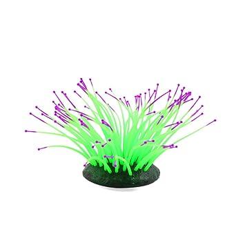 sourcingmap® Silicona Verde Brillante Efecto De Mar Artificial Anémona Coral Pecera Paisaje: Amazon.es: Productos para mascotas