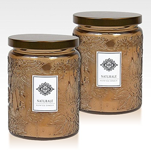 Dynamic Collections Aromatherapy Scented Candles - Great for Minimalistic Home Decor, Stress Relief, and Gift Set of Two 16 Ounce Mason Jar Candles (Naturale)