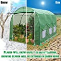 BenefitUSA vendorGH050 Outdoor Garden Green House Walk Greenhouse