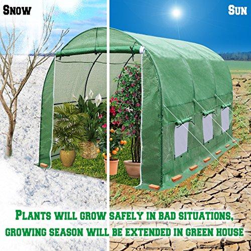 BenefitUSA vendorGH050 Outdoor Garden Green House Walk Greenhouse