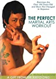 Perfect Martial Arts Workout with Michael Nevermind