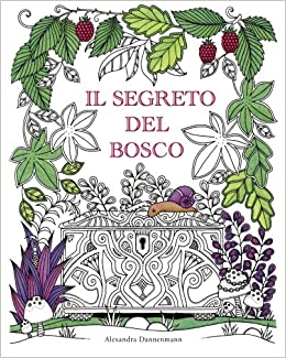 Il Segreto Del Bosco Cerca I Gioielli Nascosti Un Libro Da
