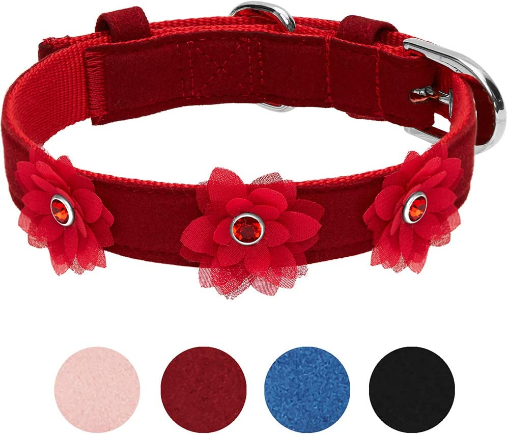 UMI. Essential Designer - Collar para Perros con Bonito Estampado de Flores y Hebilla metálica S, Cuello 23-32 cm (Rojo Sangre)