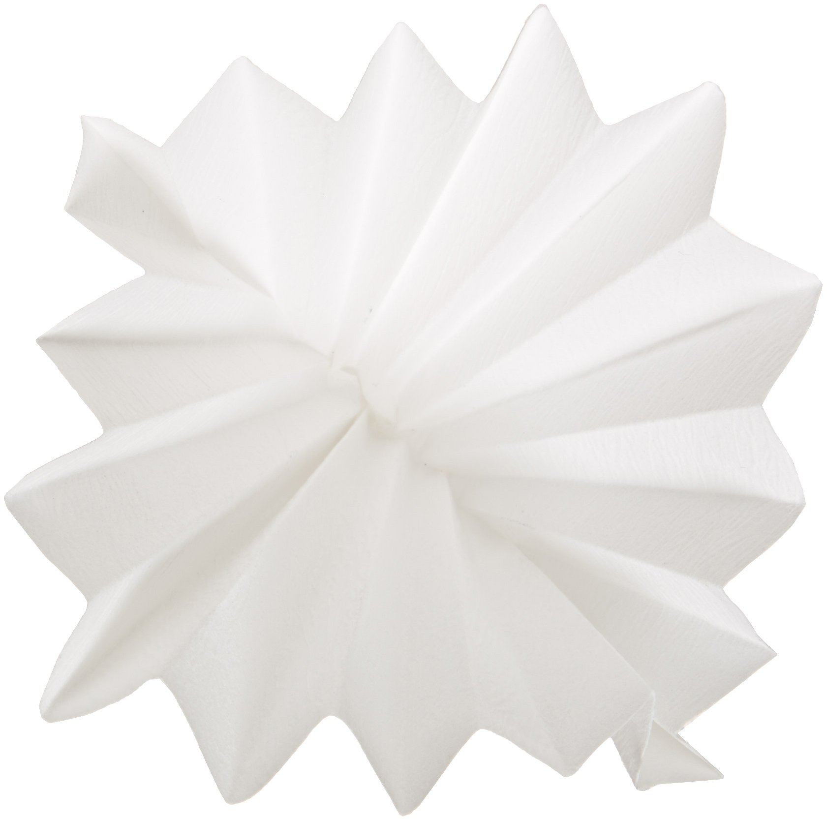 GE Whatman Reeve Angel 5802-150 Qualitative Filter Paper, Circle, Creped Surface, Prepleated, Fast Speed, Grade 802, 15cm Diameter (Pack of 100)