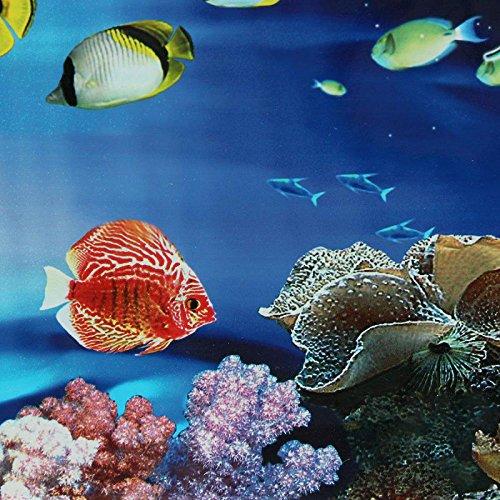 40/50cm(H) PVC Double Sided Aquarium Fish Tank Poster Background Decoration Aquarium Ocean Decorative Wall Background Poster (40x60cm)