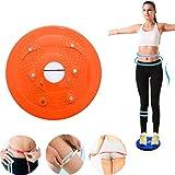 Twist Taille Torsion disque Tableau d'aérobic exercice fitness réflexologie Aimants Planche d'équilibre d'exercice d'équipement