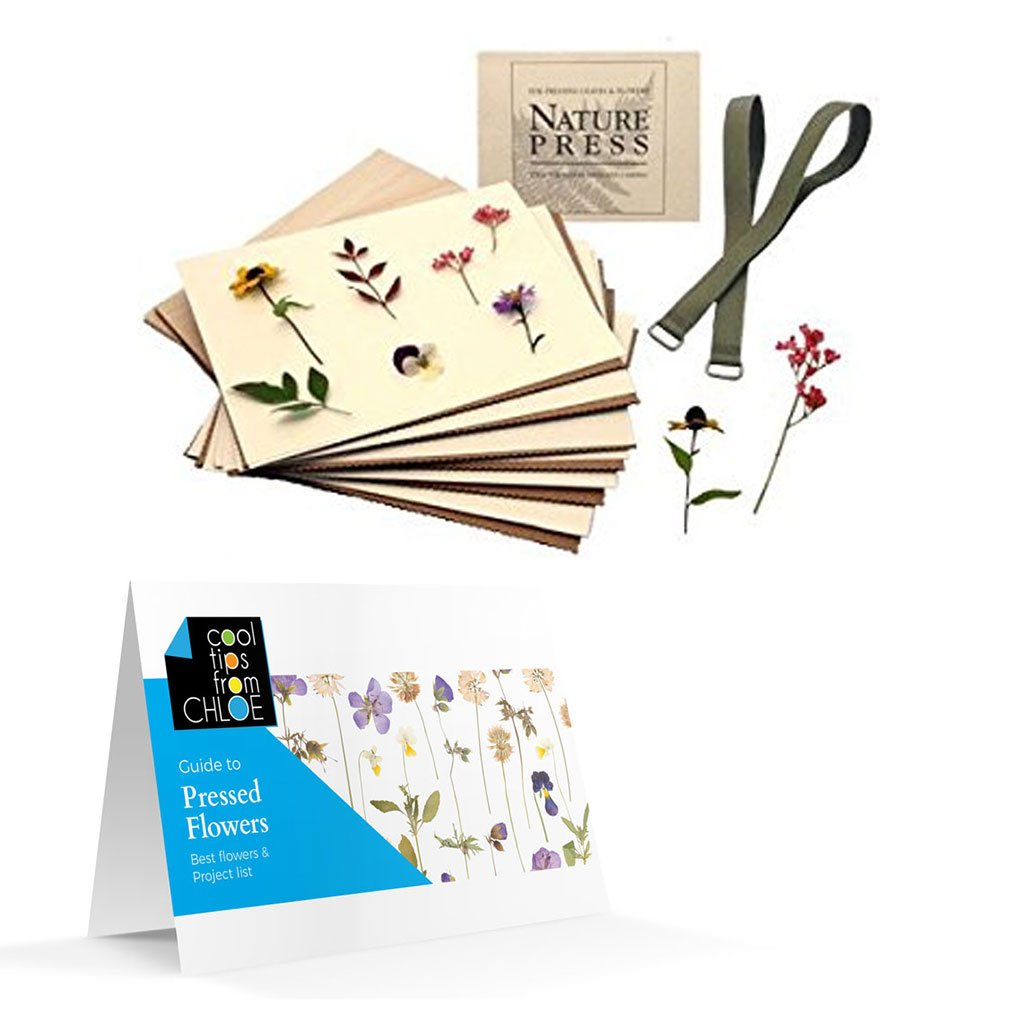 Nature Press Flower & Leaf Press 7 X 9 (For Pressing Leaves & Flowers) with Pressed Flower Guide by Nature Press